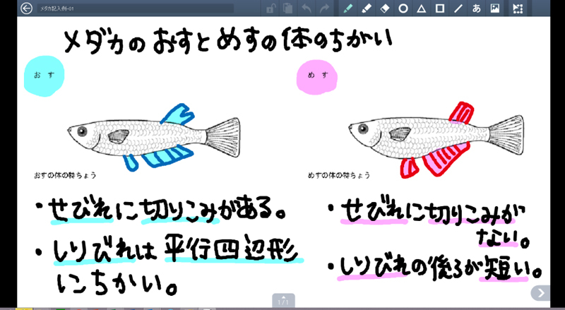 (株)内田洋行のノート専用ツール「デジタルスクールノート」