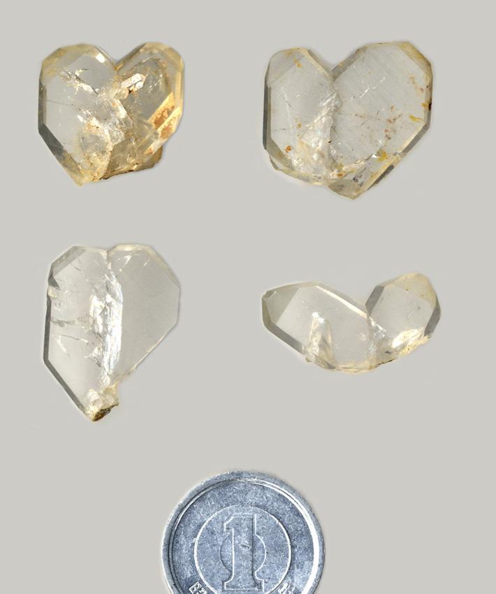 〈写真4〉2つの水晶がハート形~V字形にくっついているもの。日本産のものが最初に研究されたので「日本式双晶(にほんしきそうしょう)」と命名されています。2つの水晶が仲睦まじく寄り添っているように見えることから、俗に「夫婦水晶(めおとすいしょう)」と呼ばれることもあります。長崎県奈留島産。