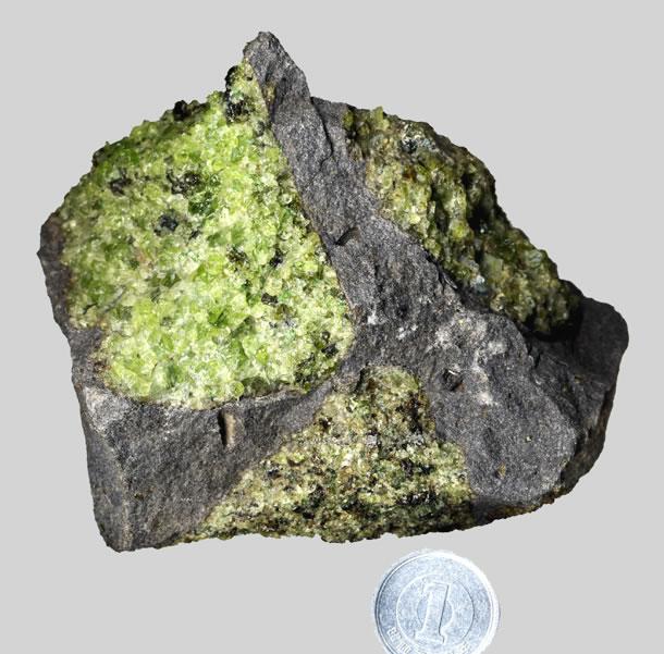 <写真3>マントル起源のかんらん岩(黄緑色)を含んだ玄武岩(灰色)。アメリカ合衆国アリゾナ州サン・カルロス産。(クリックで拡大)
