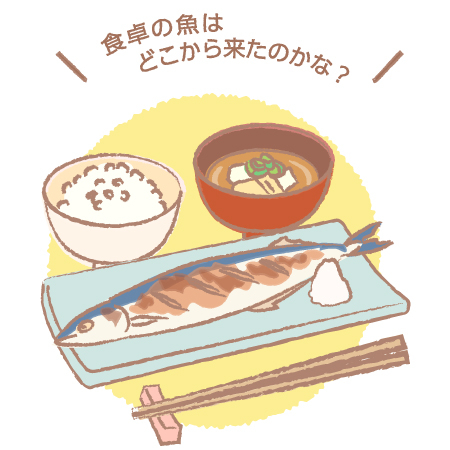 水産業のさかんな地域【食文化・社会性】[小5・社会]