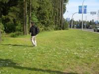 車道のすぐ横は自然。帰り道に探検したくなって横道へ・・・。