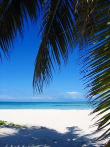 カリブ海沖には、小さな無人島がたくさん浮かぶ。 真っ白な砂浜とどこまでも続く青い海。 時の流れは果てしなくゆっくりだ。